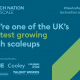 pimberly-uks-fastest-growing-scaleup